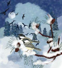 drawing birds winter pets landscape