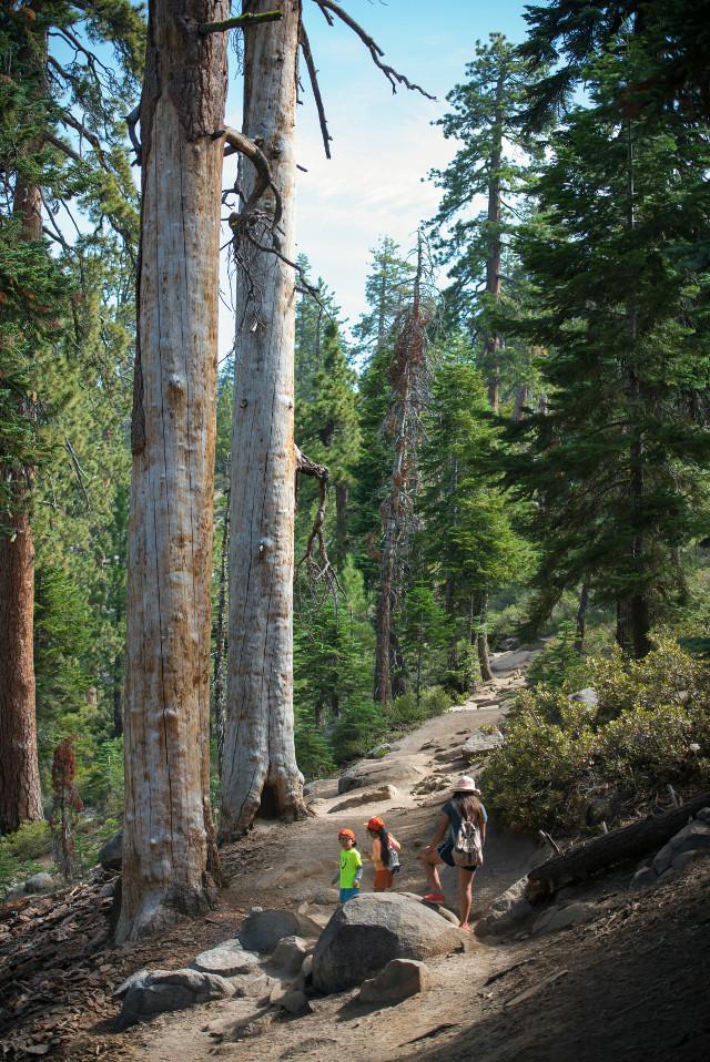 Hiking in California.