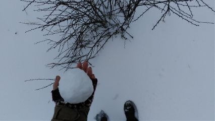 winter cold snow