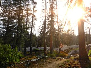 nature california photography travel