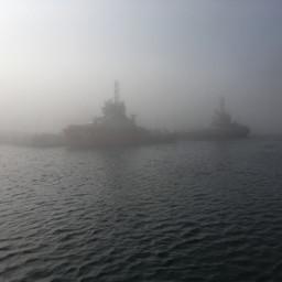 fog foggy interesting nature nofilter