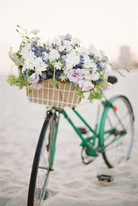 bicycle flowers basket snow freetoedit