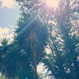 sunnydays perfectweather sunny sunny_day weather